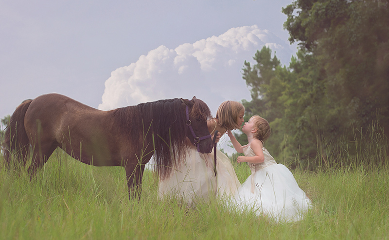 Sisters in a field with horse