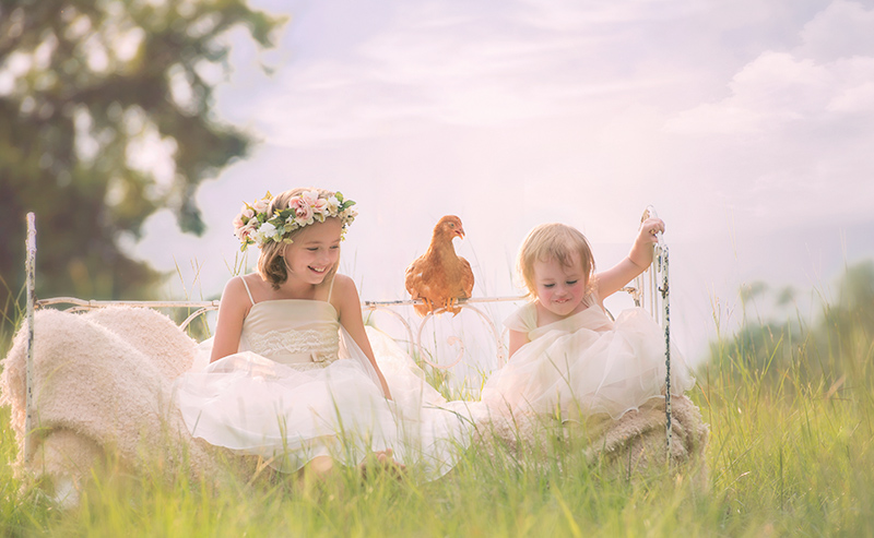 Little girls jumping on bed in a meadow with a pet chicken