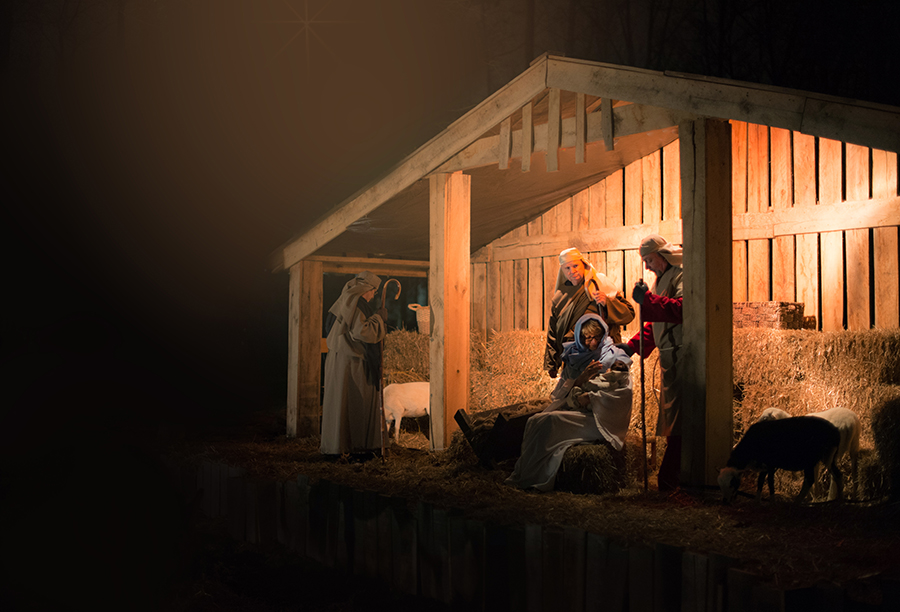 Live Christmas nativity